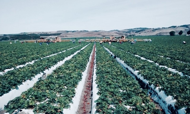 Housing for Harvest Santa Barbara County